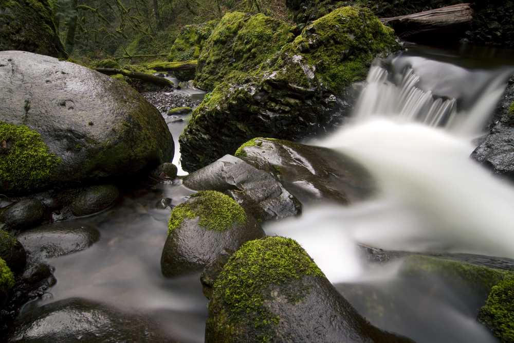 Roaring River.jpg