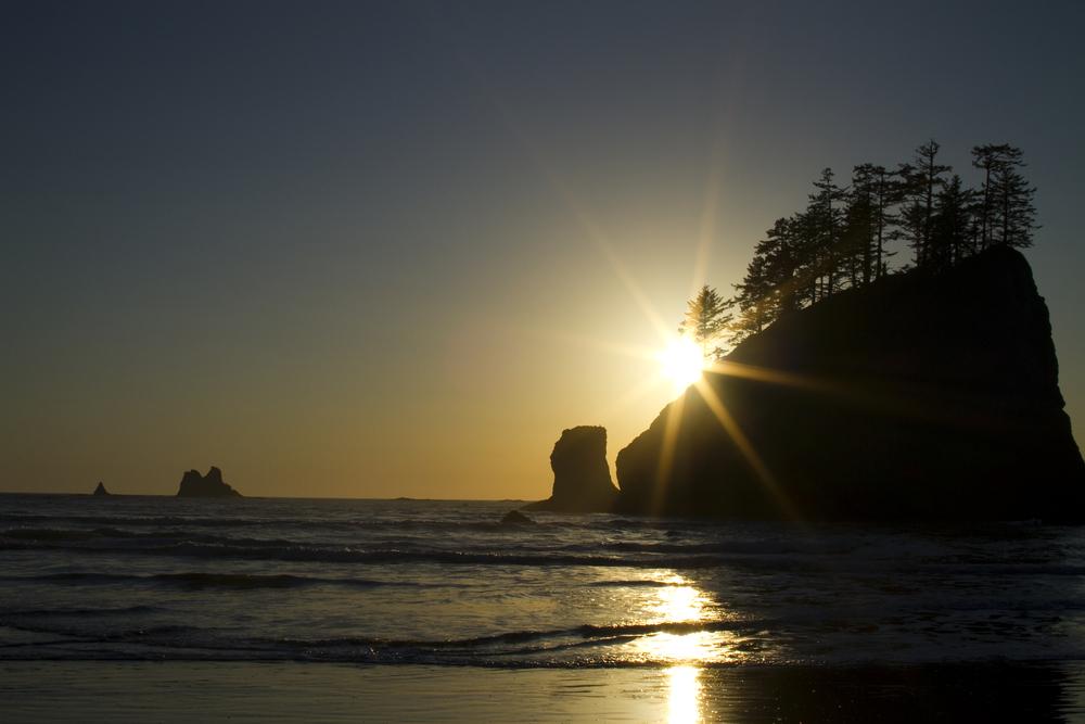 sun flare-1.jpg