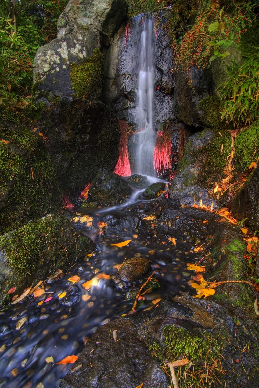 Waterfrall.jpg
