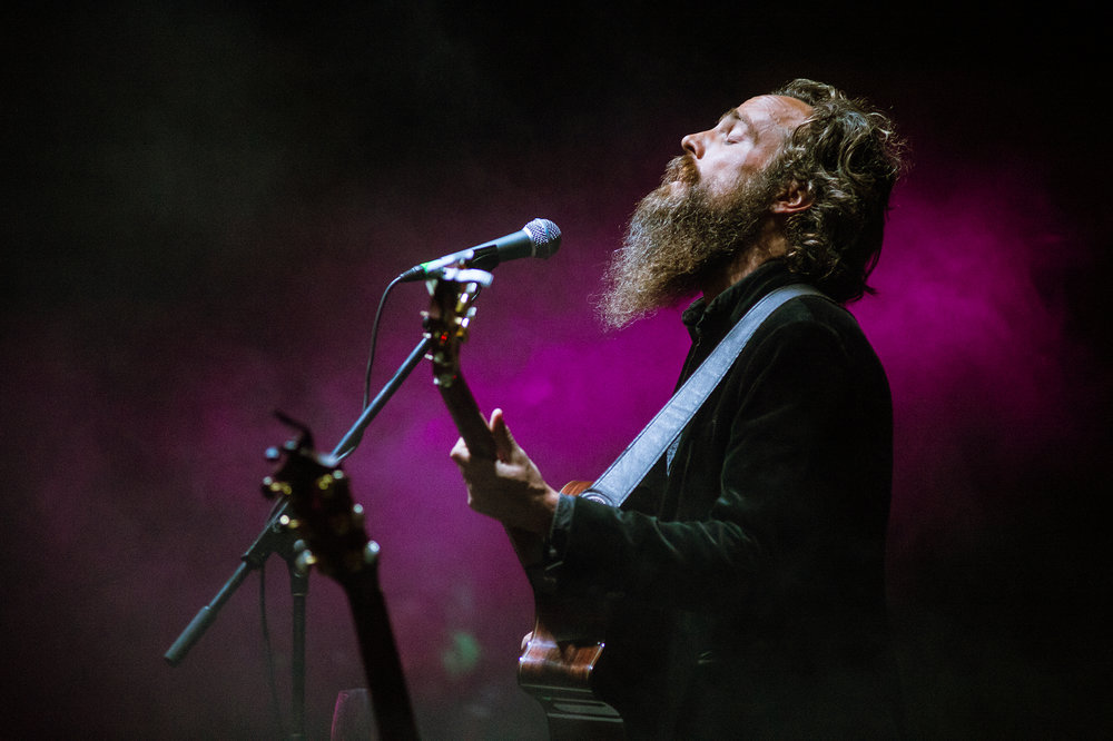 Iron & Wine, Music Tastes Good 2016
