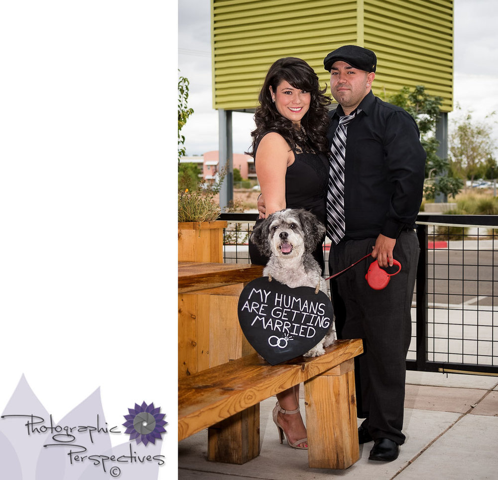 Albuquerque Engagement Photographers | Ponderosa Brewing Company | Craft Brew | Favorite pet | Engagement Session | Photographic Perspectives