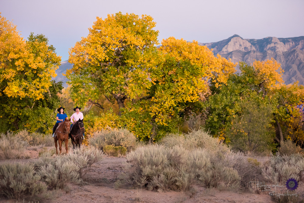 A beautiful fall evening for a photo-shoot on horseback, the Sandia mountains off in the distance while we ride in the Rio Grande Bosque.