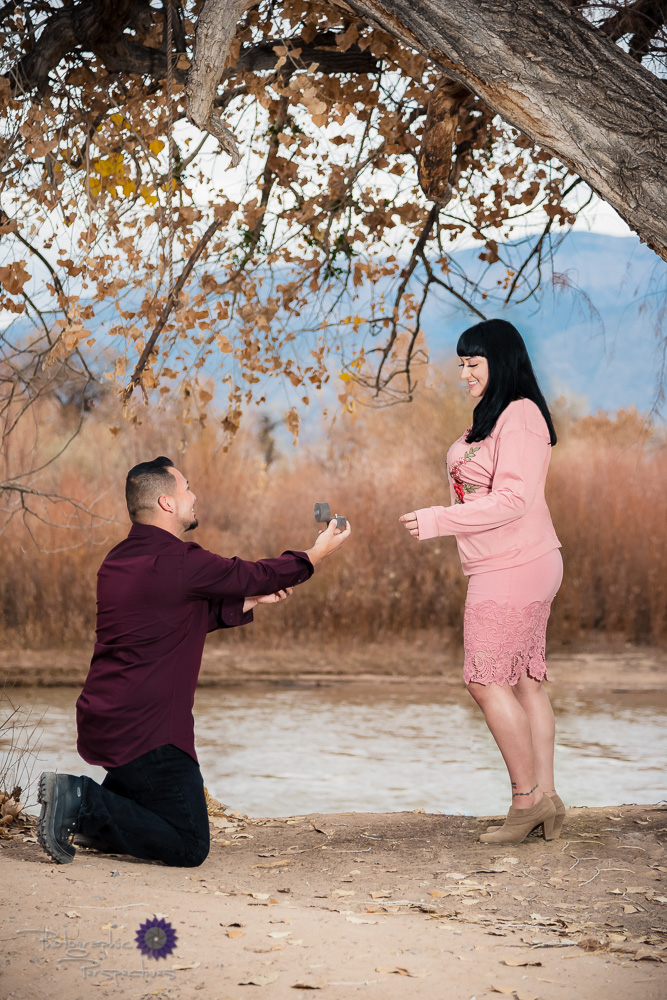 Photographic Perspectives | Engagement Photographers