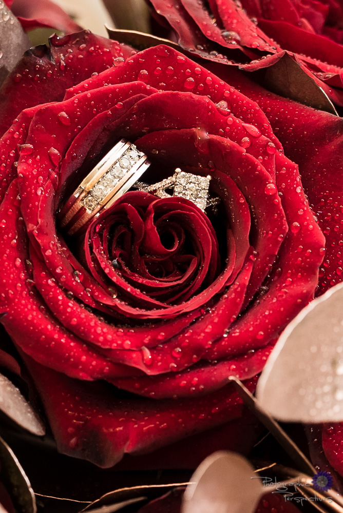 Wedding Rings | Red Rose | Wedding Details