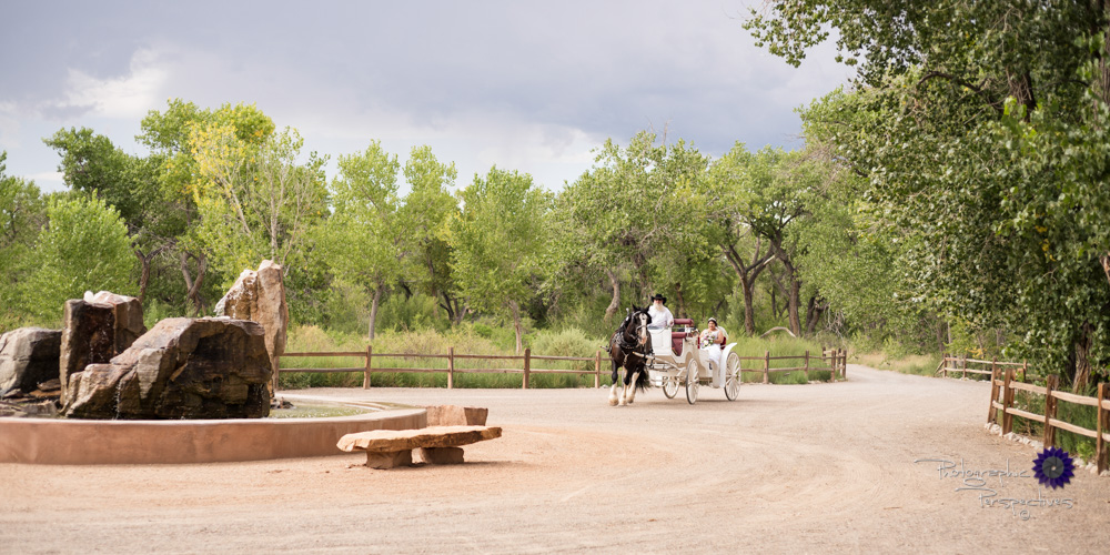 Hyatt Regency Tamaya Wedding | New Mexico Wedding Photographer | Horse and Carriage.jpg