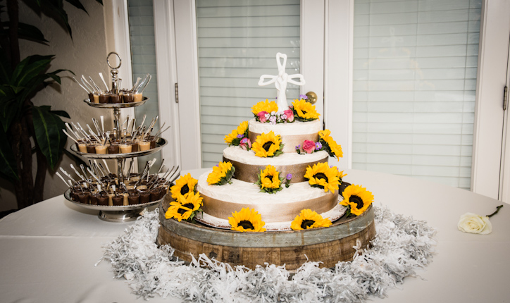 carlla-juffo-photography-sarasota-wedding-photographer (8).JPG