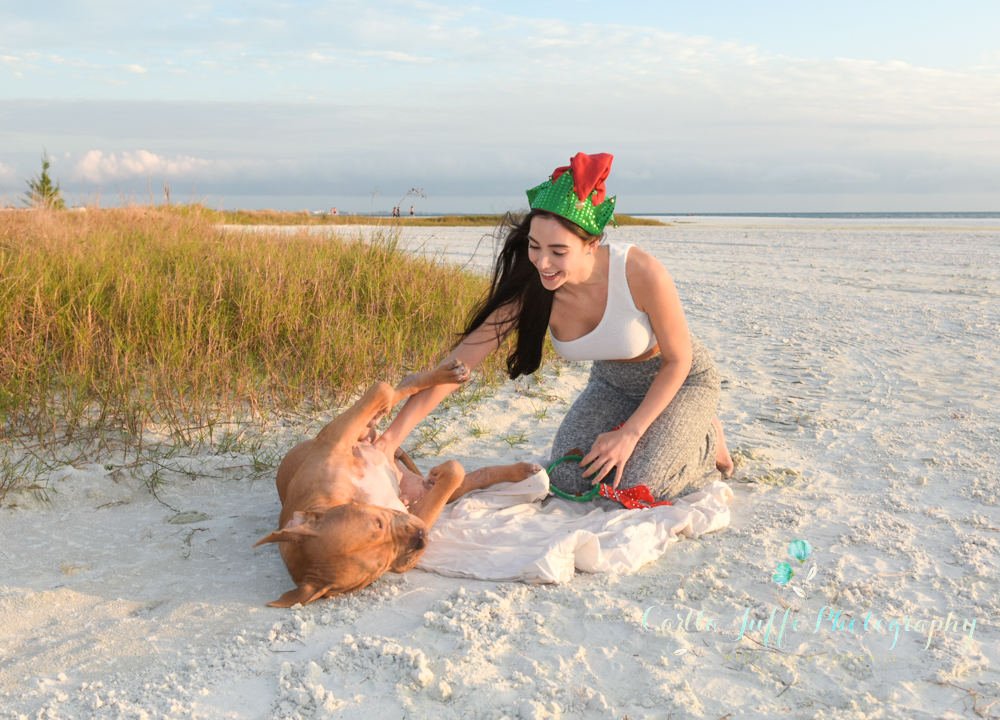 Beach Dog Photography - Carlla Juffo Photography