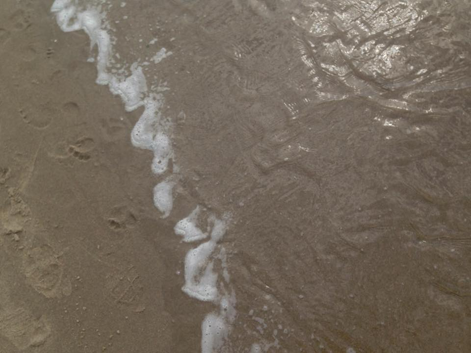 sand and water.jpg