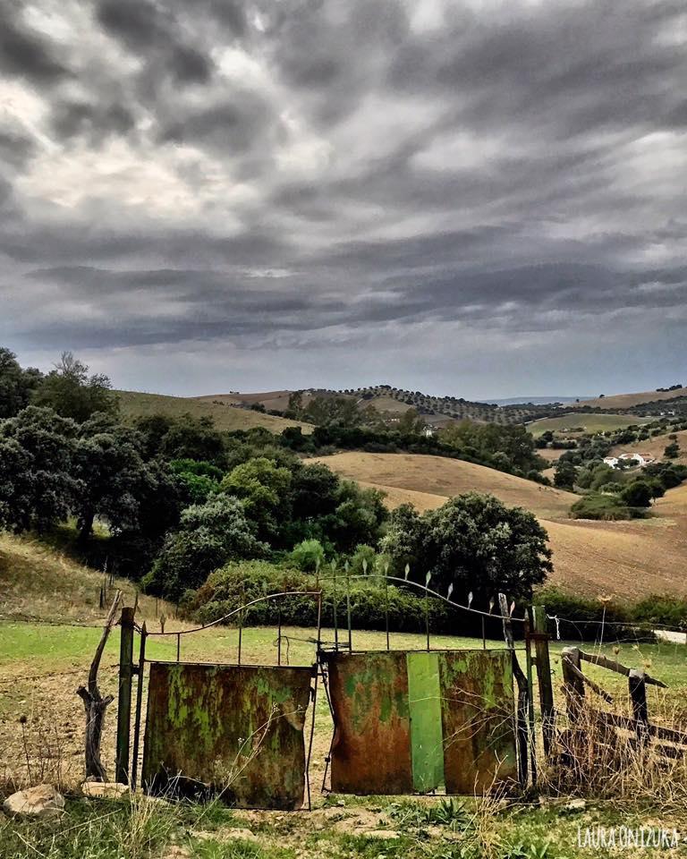 Camino de la Romeria