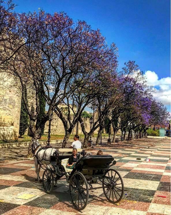 La Alameda Vieja in Jerez