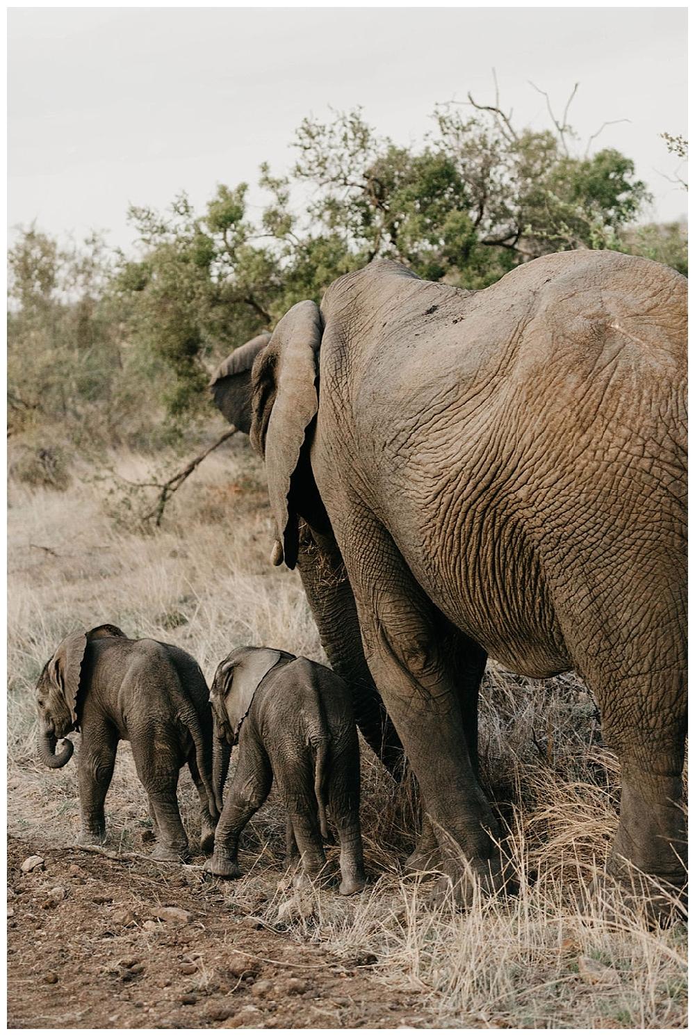 christinakarstphotography_southafricaelopement-422.jpg