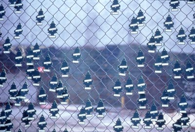 Royal Pine (detail) , 1998, Little Tree air fresheners, zip ties, mounted on existing cyclone fence, east village, New York City