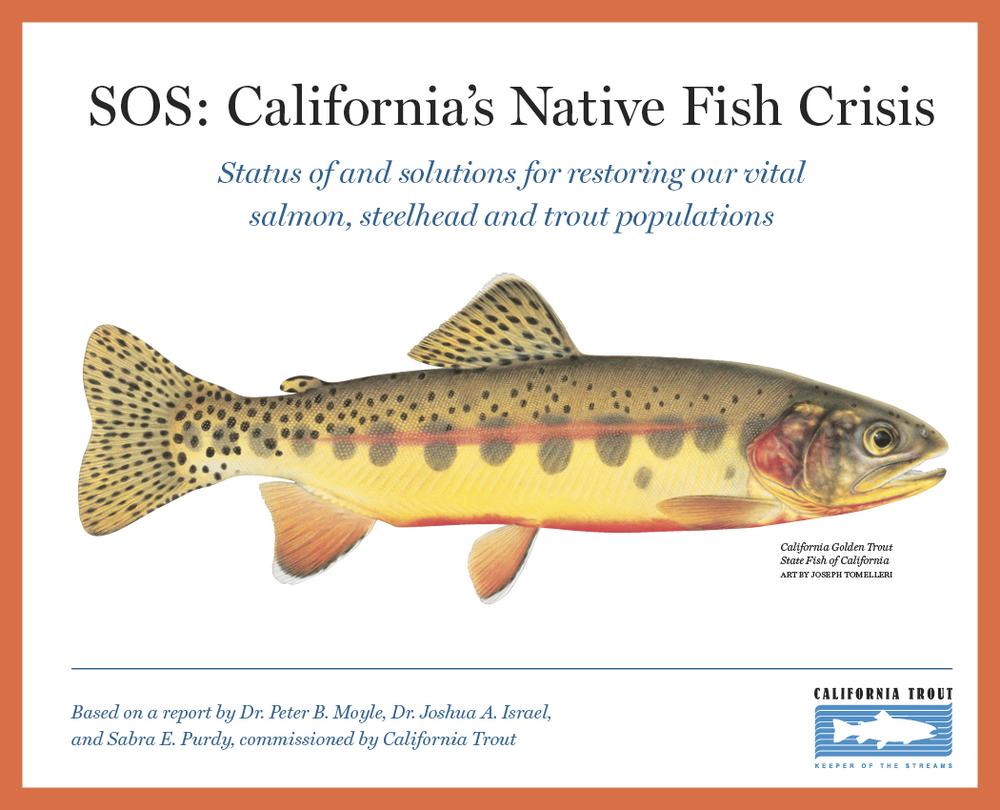 SOS  | Team: Big Think Studios (Peter Walbridge, Brian MacDougall, Erin Heath, and me); Dr. Peter B. Moyle, UC Davis research team, and Cal Trout; Illustrator: Joseph Tomelleri.