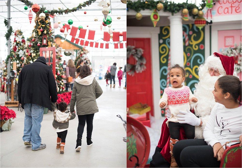 christmas_tradition_greenstreet_gardens_006.jpg