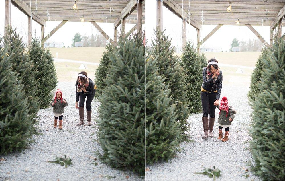 christmas_tradition_greenstreet_gardens_0010.jpg