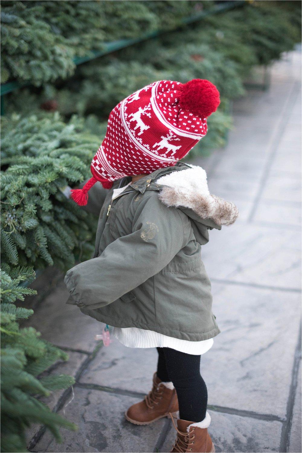 christmas_tradition_greenstreet_gardens_002.jpg