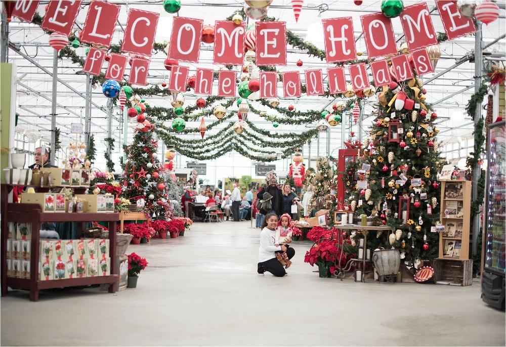 christmas_tradition_greenstreet_gardens_008.jpg