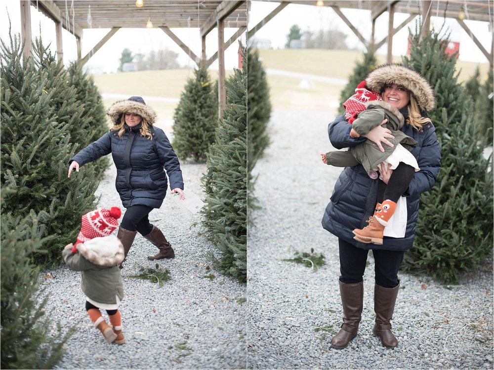christmas_tradition_greenstreet_gardens_0011.jpg