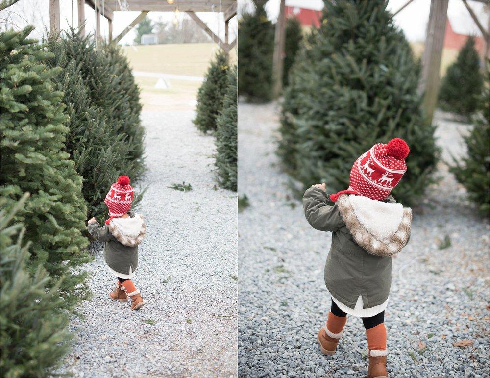 christmas_tradition_greenstreet_gardens_0012.jpg