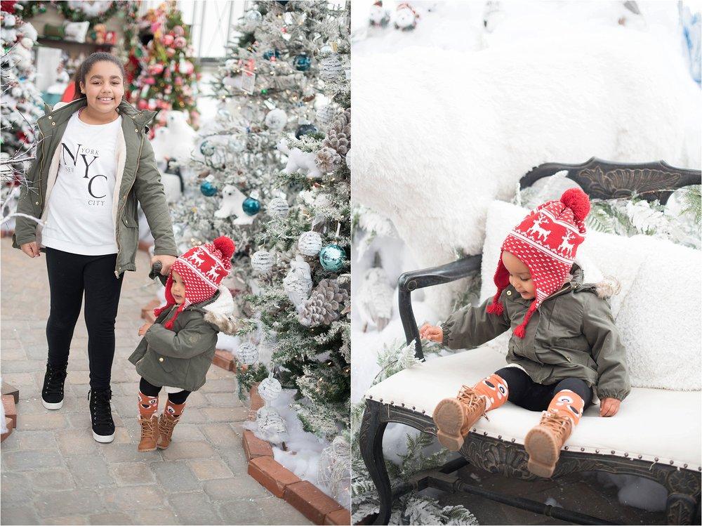 christmas_tradition_greenstreet_gardens_0014.jpg
