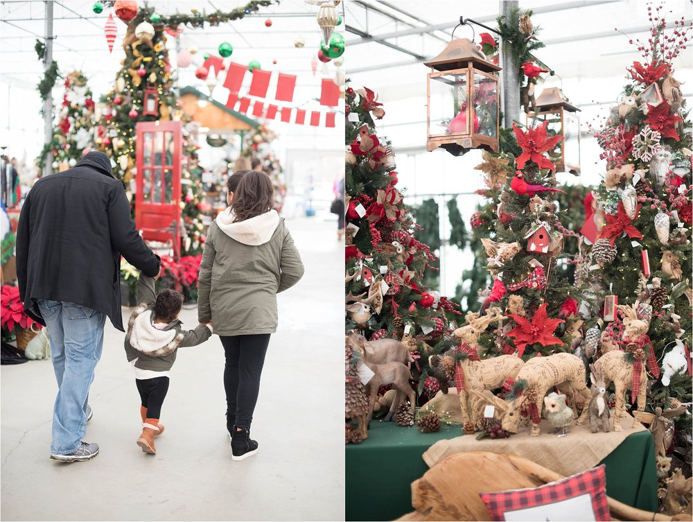 christmas_tradition_greenstreet_gardens_0019.jpg