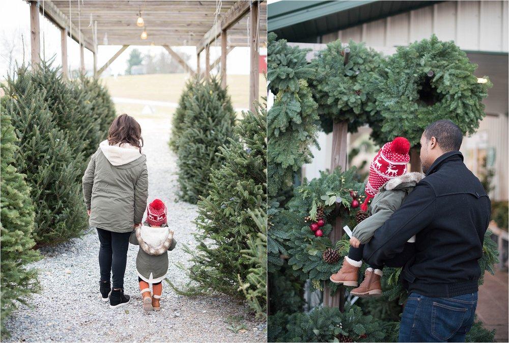 christmas_tradition_greenstreet_gardens_0021.jpg