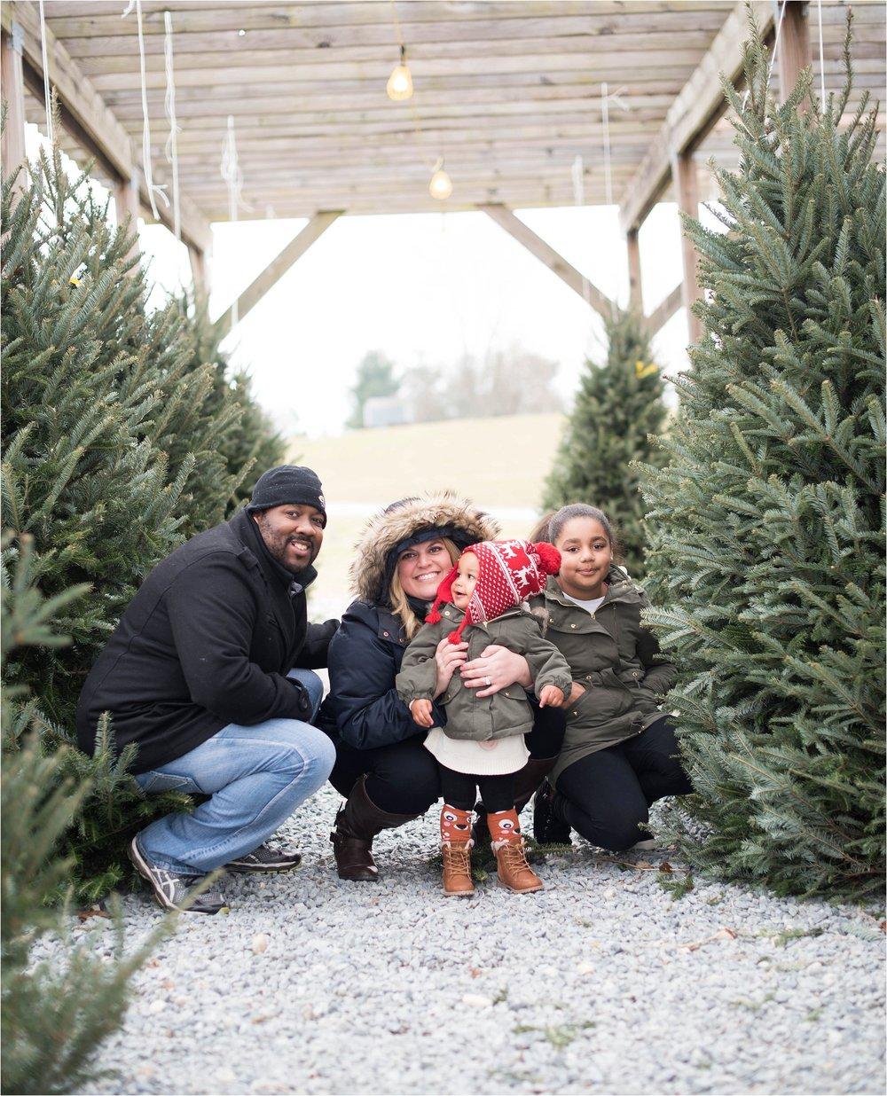 christmas_tradition_greenstreet_gardens_0020.jpg