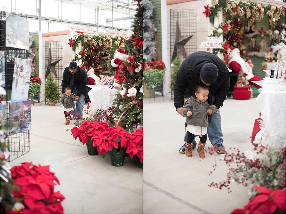 christmas_tradition_greenstreet_gardens_0023.jpg