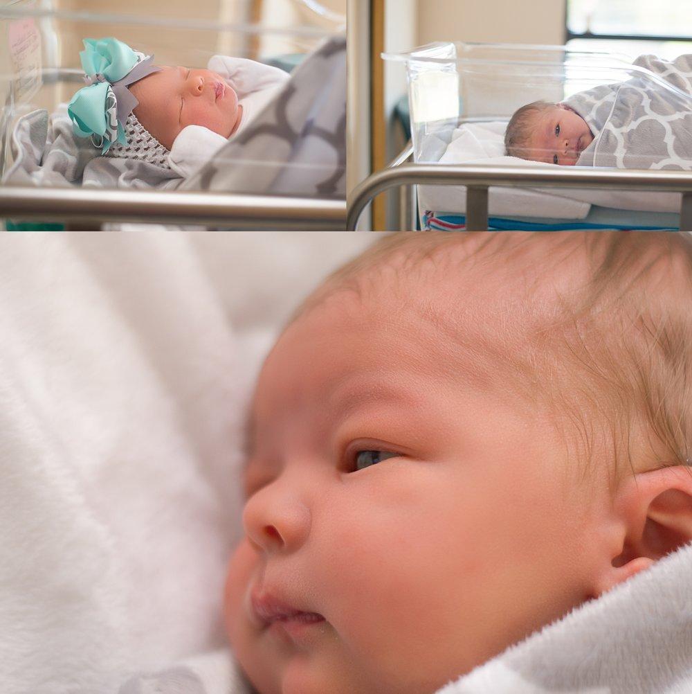 newborn portraits wilmington NC