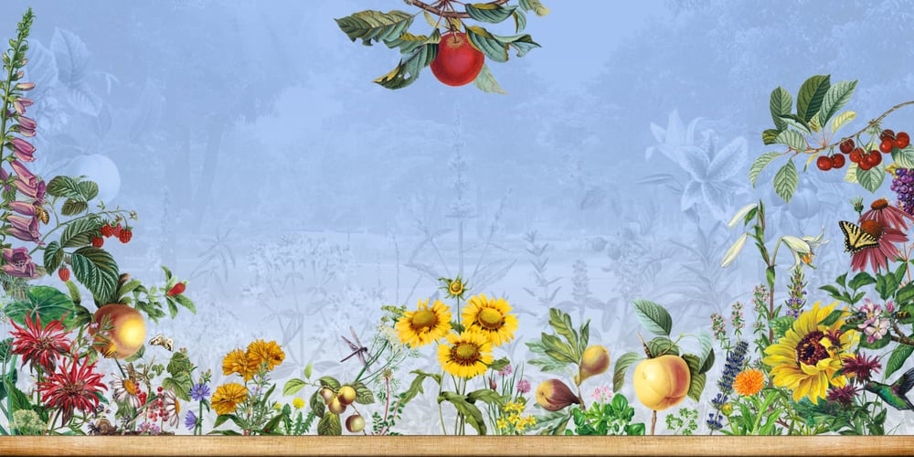 Permaculture Design · Urban Agriculture · Organic Gardening   The Urban Farmer
