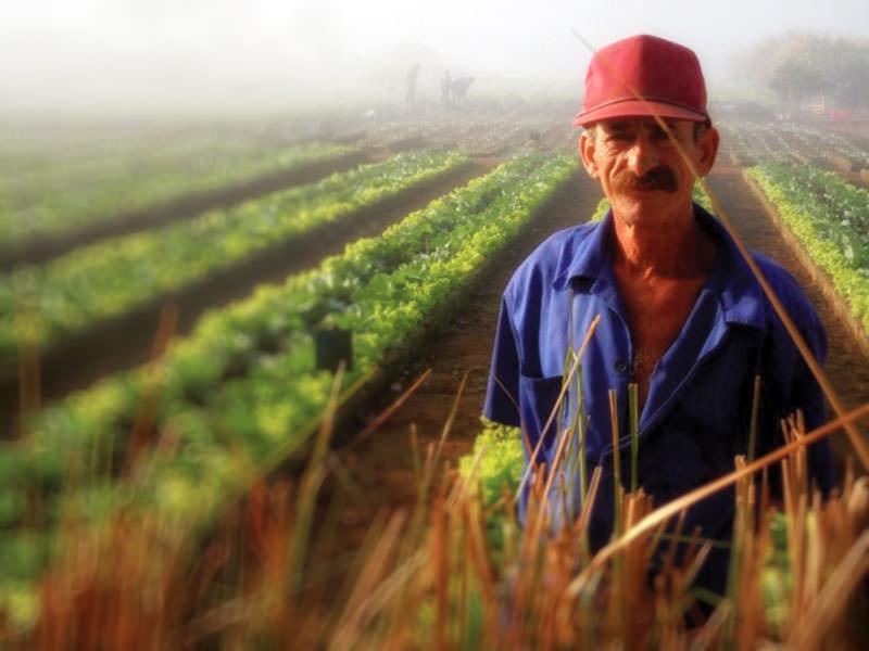cuba2011_farmer.jpg