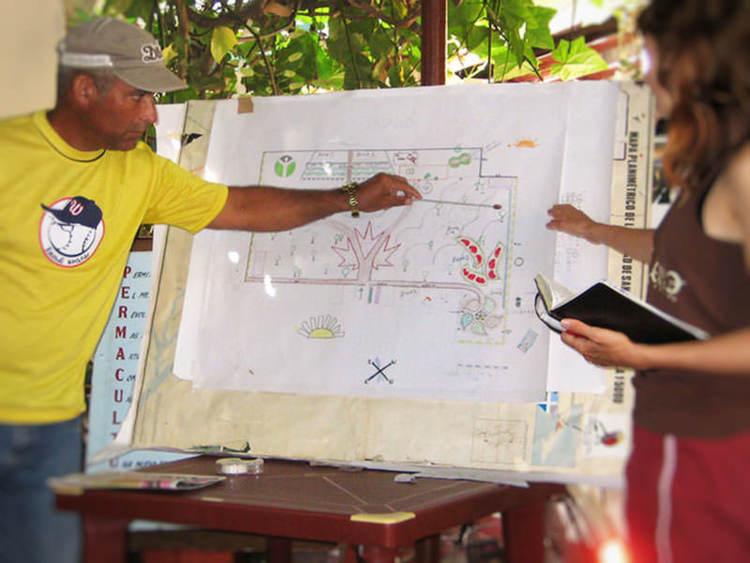 Permaculture-Cuba-090.jpg