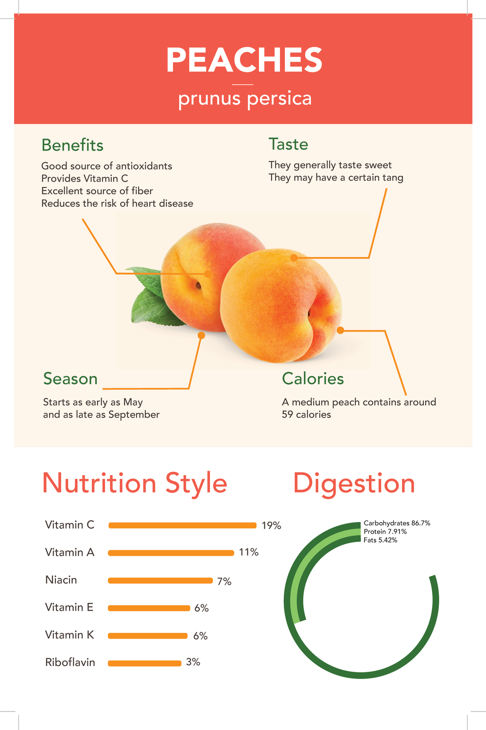 midterm_syschoi_fruit_infographic_Page_2.png