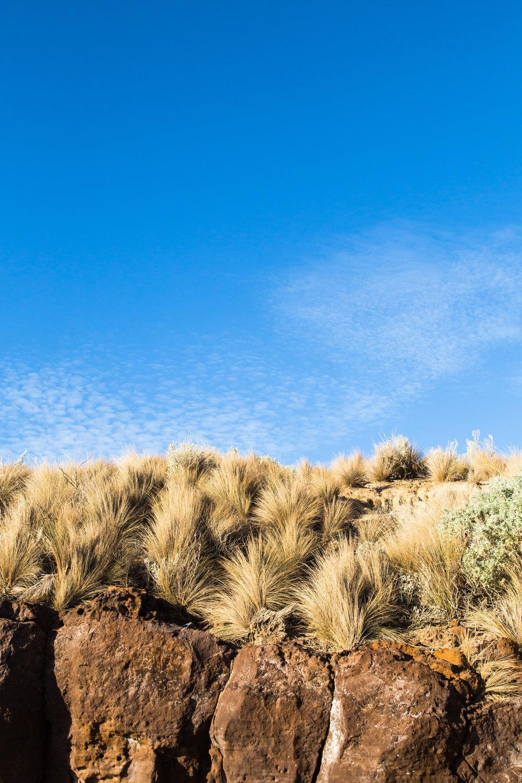HNowlan_Landscape2_Lacuna_Photograph©SuziAppel.jpg
