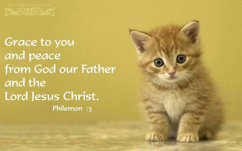 Book of Philemon - better with a kitten in it.