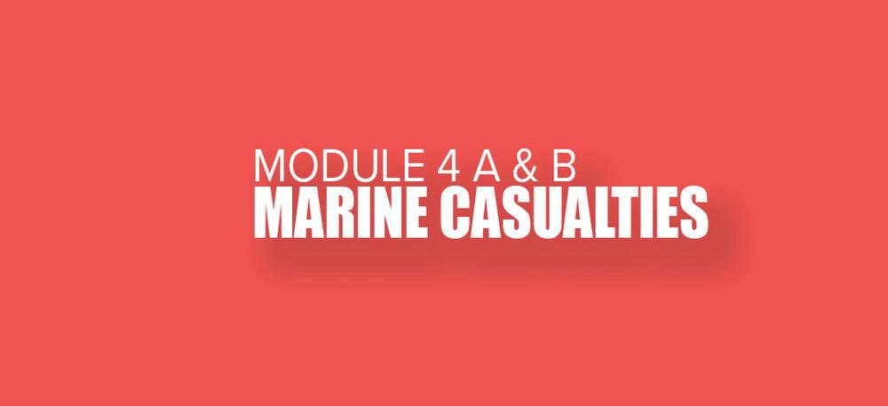 Maritime-Law-Association-4.jpg
