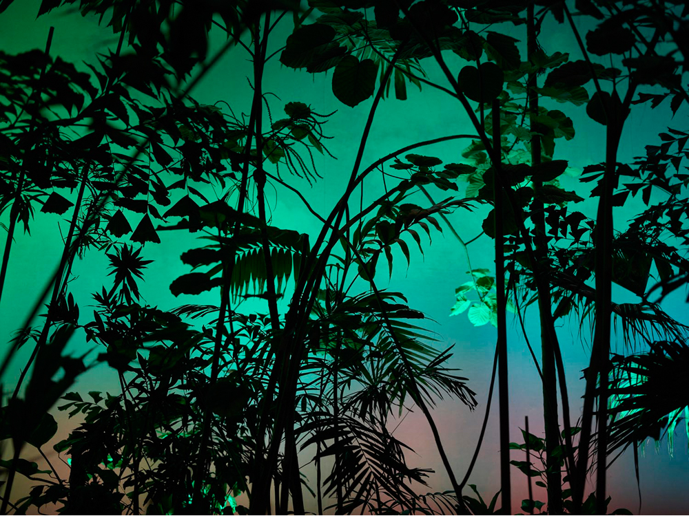Tropic_Island_2015__©_Gataric-Fotografie__179.jpg