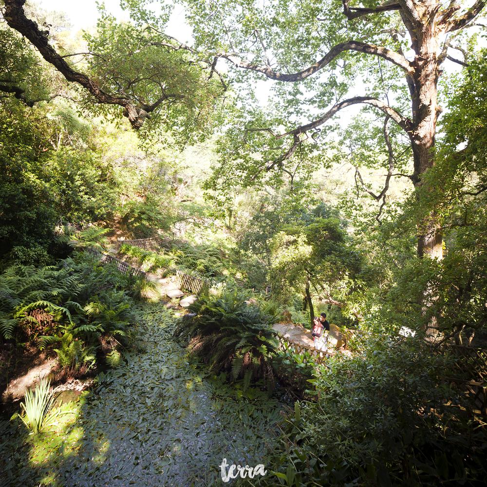 sessao-fotografica-parque-palacio-monserrate-sintra-terra-fotografia-0006.jpg