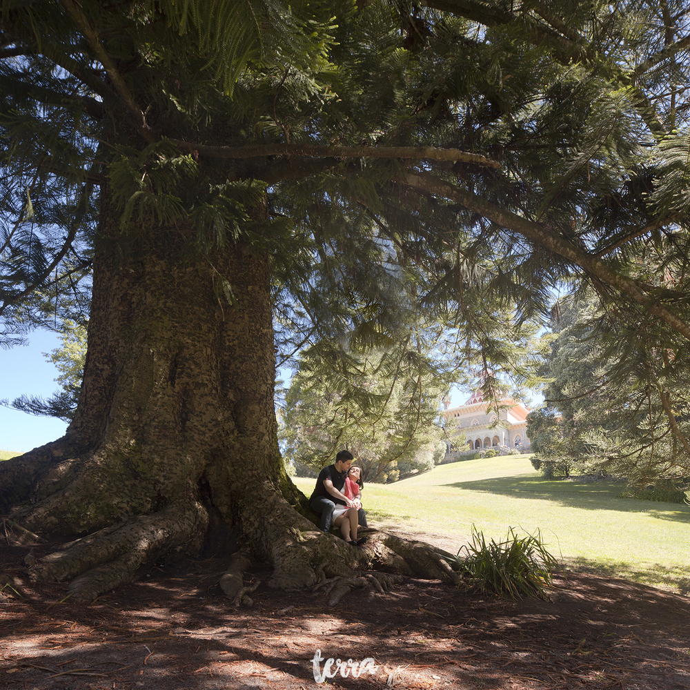 sessao-fotografica-parque-palacio-monserrate-sintra-terra-fotografia-0034.jpg