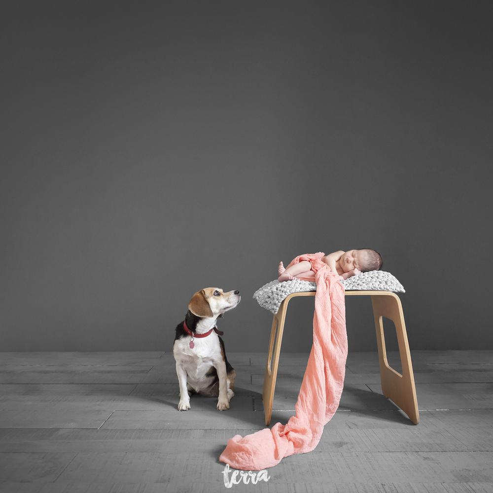 sessao-fotografica-recem-nascido-terra-fotografia-16.jpg