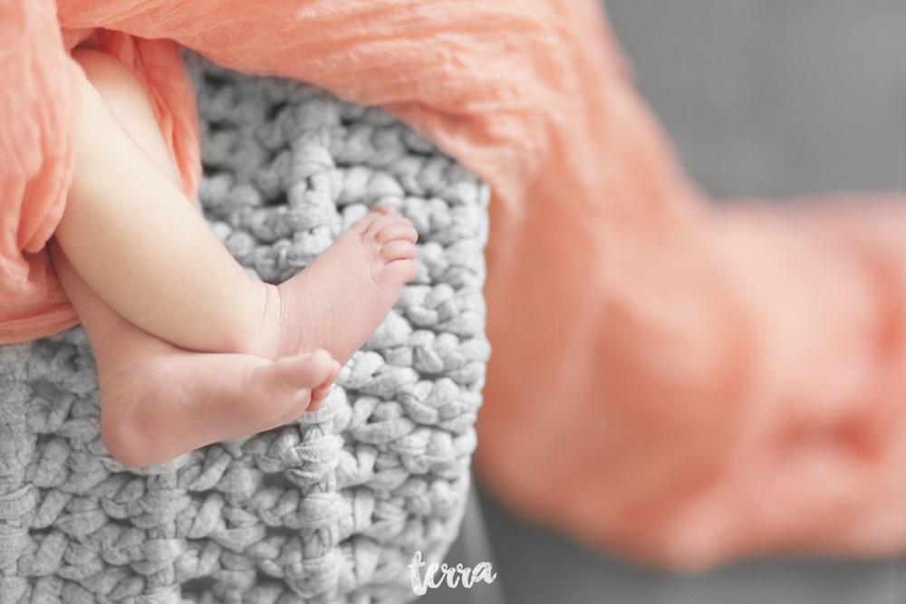 sessao-fotografica-recem-nascido-terra-fotografia-21.jpg
