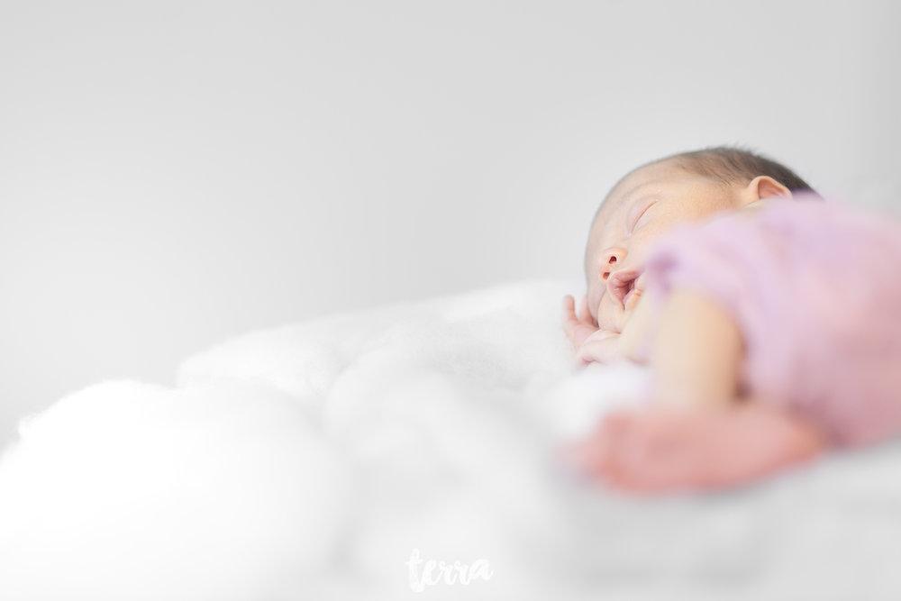sessao-fotografica-recem-nascido-terra-fotografia-08.jpg