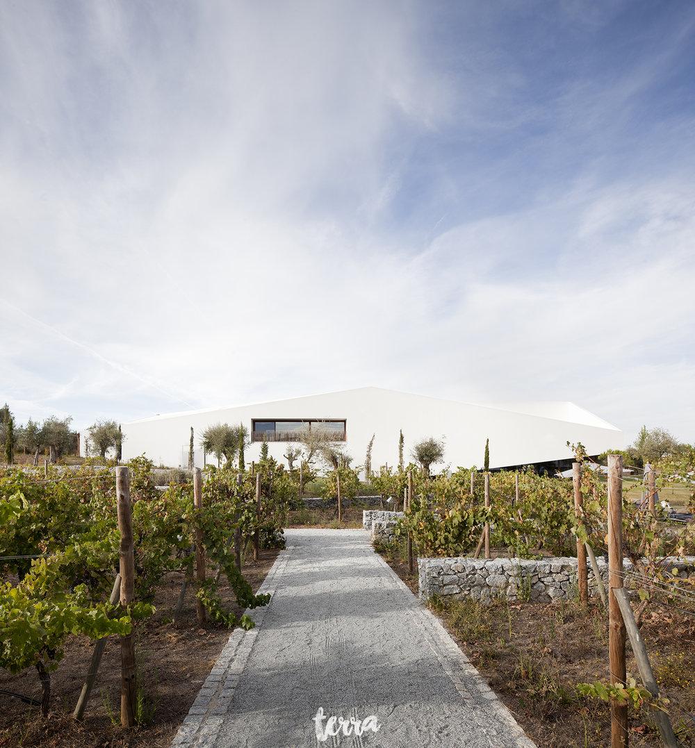 sessao-fotografica-trash-the-dress-land-vineyards-alentejo-terra-fotografia-0016.jpg