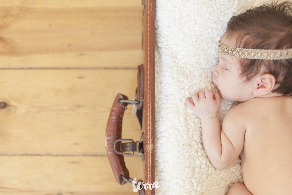 sessao-fotografica-recem-nascido-bebe-terra-fotografia-023.jpg