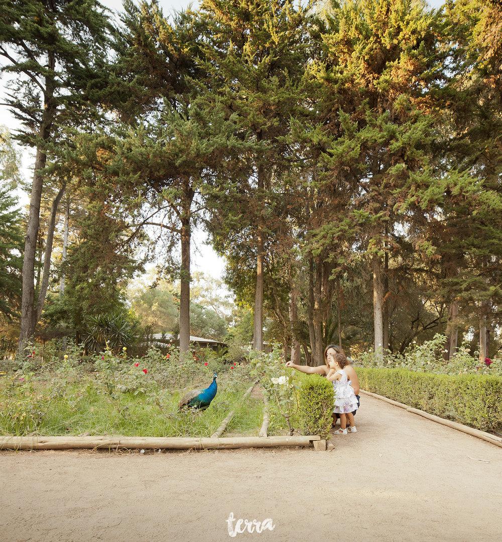 sessao-fotografica-familia-parque-marechal-carmona-terra-fotografia-0027.jpg