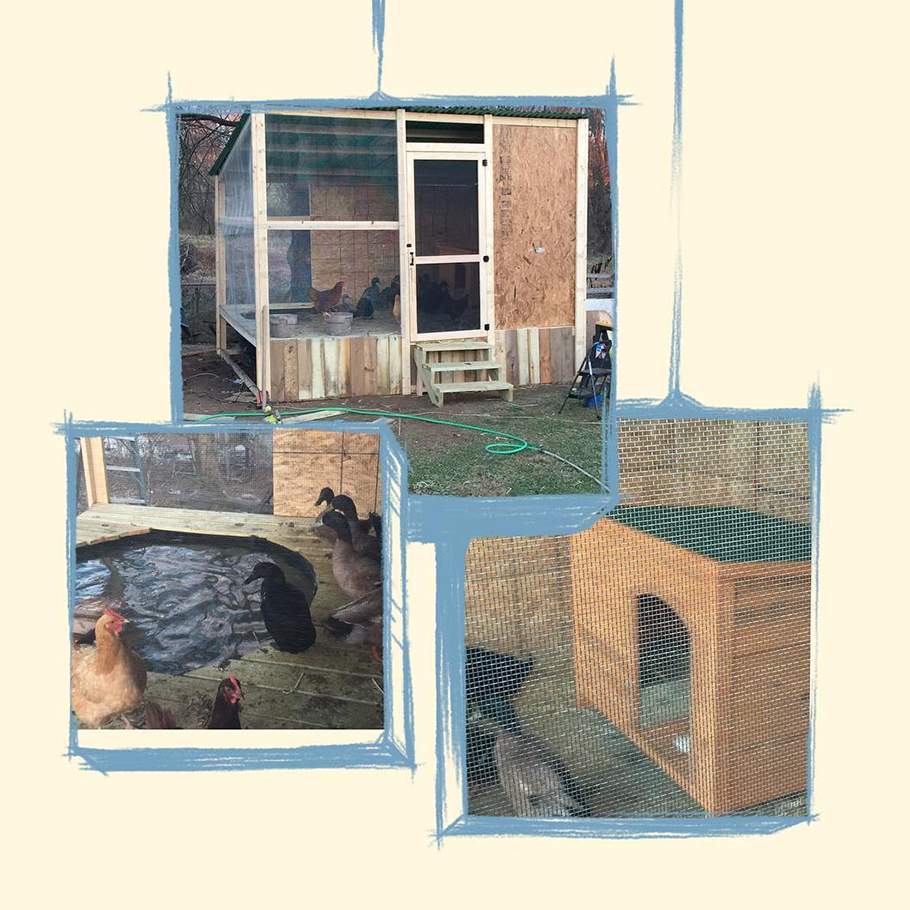 Since [Karl] Storz started with Rocketrip I have used #MyRocketripRewards to build a custom $1200 duck house. Next rewards will get the pig pen updated to a pig palace.