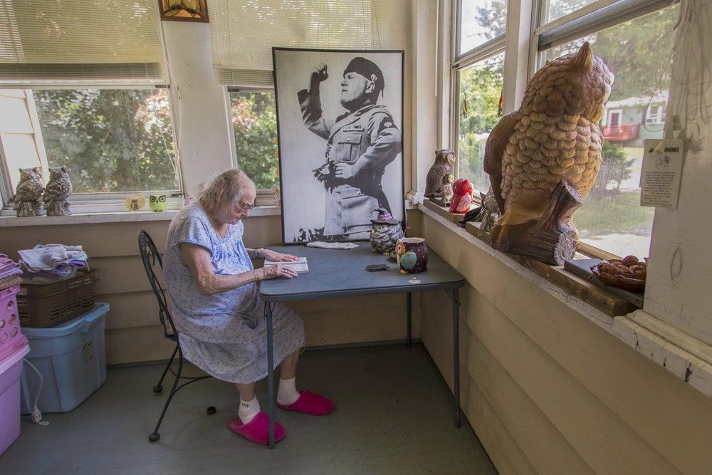 Mussolini and the Owls, 2015