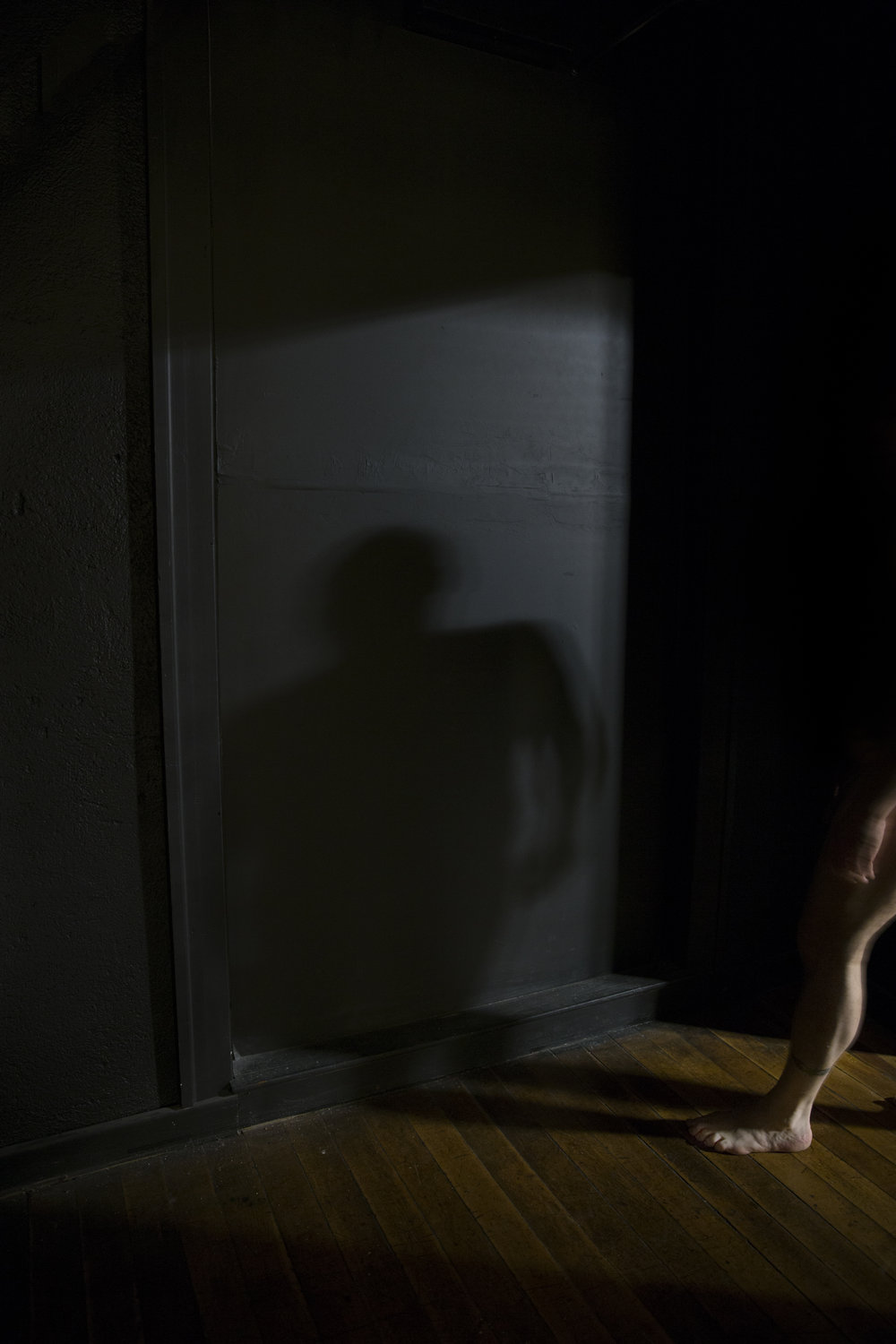 Shadow Self, 2016