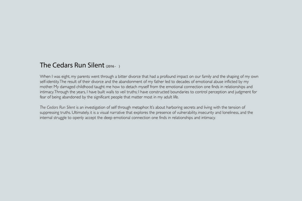 Cedars Run Silent.jpg