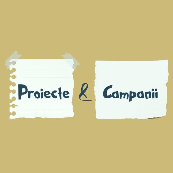 proiecte-campanii.jpg